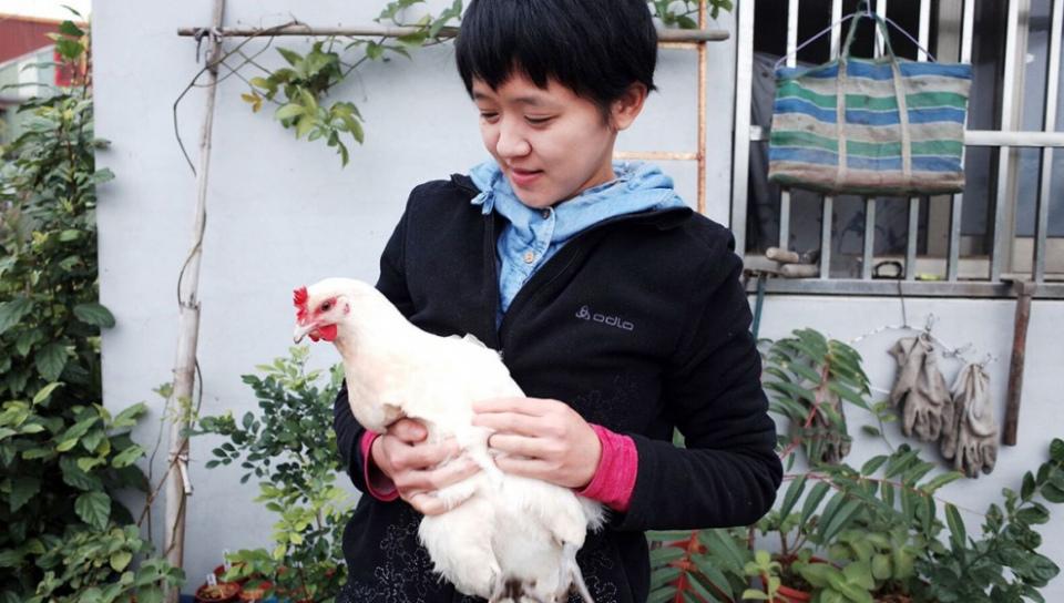 李盈瑩與她飼養的雞隻「小白」。(諸葛望/攝)